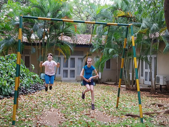 Hotel Sigiriya: swings