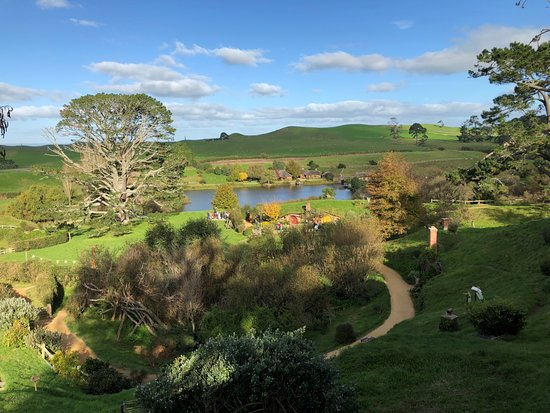 Hobbiton™ Movie Set 2-Hour Walking Tour from Shires Rest: Nice view of Hobbiton!
