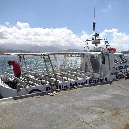 Starida Puffin Island Cruises & Sea Fishing Trips: photo0.jpg