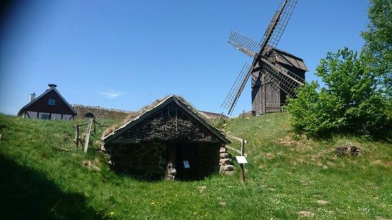 Blentarp, Suède : DSC_1362_large.jpg