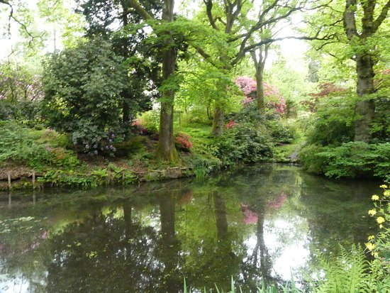 Ramster Gardens: Tranquil pond