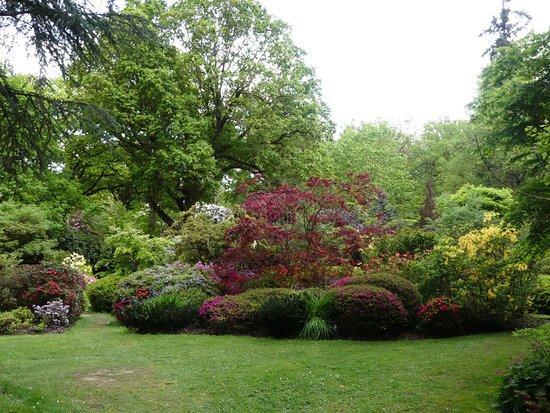 Ramster Gardens: Beautiful planting
