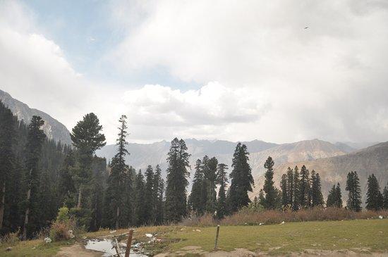 Kaghan, Pakistan: Lalazar  -- Pakistan