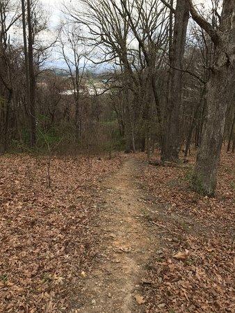 Staunton, VA: Big Oak Trail