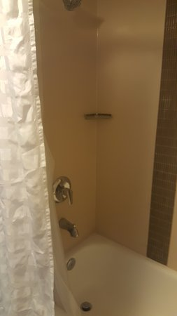 Hyatt Place Baltimore/BWI Airport Picture