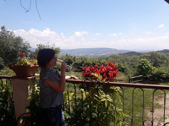 Montecorvino Pugliano 사진