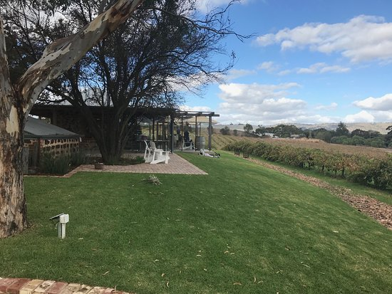 David Franz Wines: winery with a view
