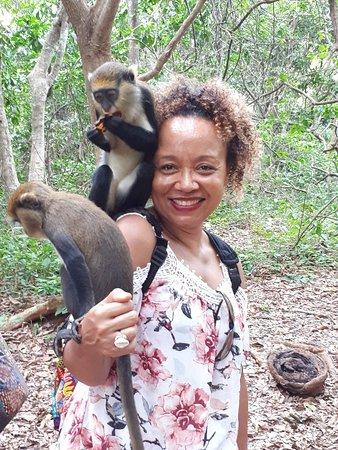 Boabeng-Fiema Monkey Sanctuary : 20180512_160457_large.jpg