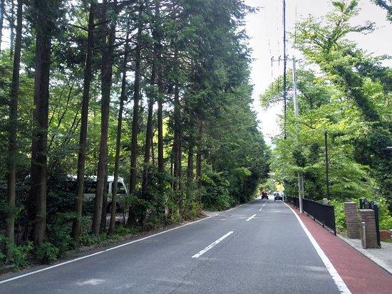 Best deal in Hakone