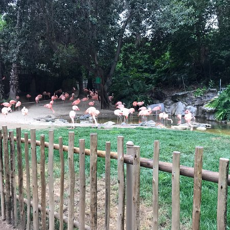 photo5.jpg - Picture of Los Angeles Zoo & Botanical Gardens, Los ...