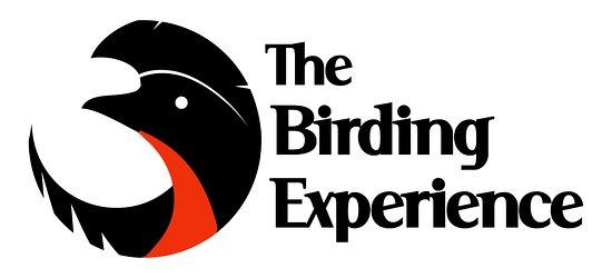 Thebirdingexperience