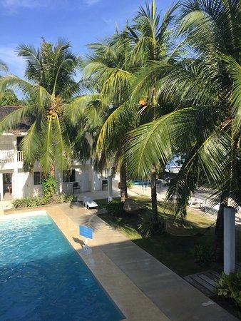 Momo Beach House: Pool
