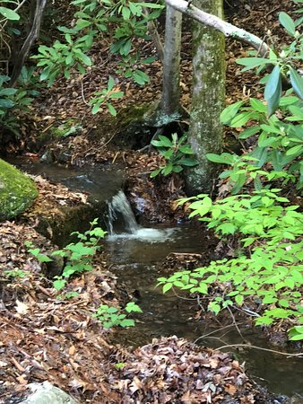Mama Gertie's Hideaway Campground: Waterfall & stream along the road/camp sites