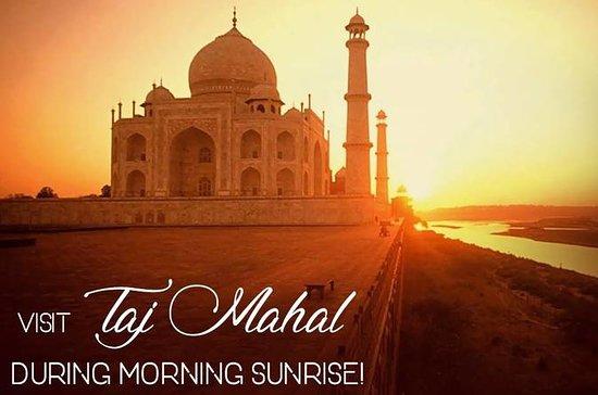 Sunrise Taj Mahal Tour De Jaipur...