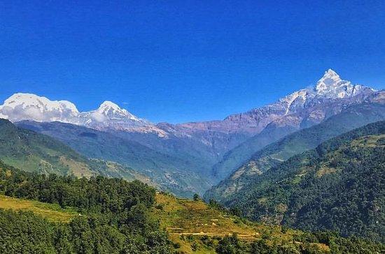 Kathmandu,Chitwan,Pokhara with...