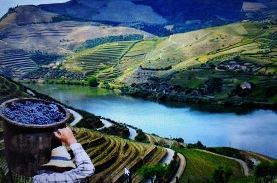 Shore Excursion to Douro valley...