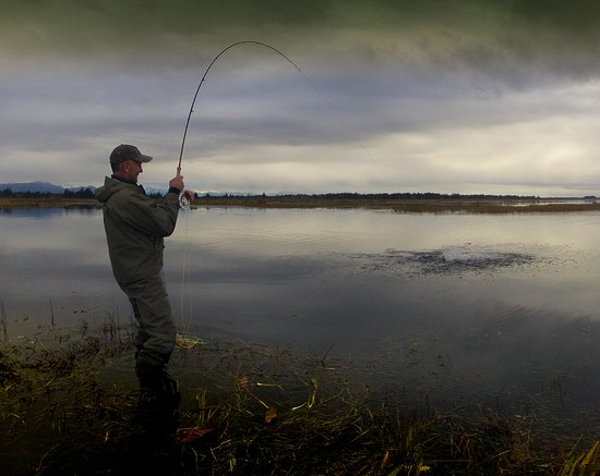 Yakutat, Alaska: Hooked Up