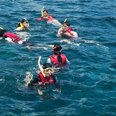 Scuba Company Marine Sports Guam照片