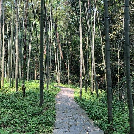 Yunxi Zhujing Scenic Resort: photo1.jpg