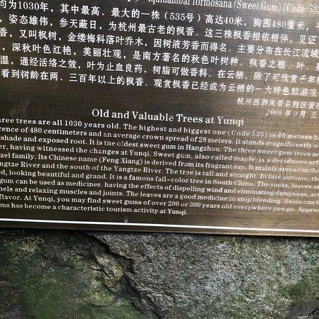 Yunxi Zhujing Scenic Resort: photo3.jpg