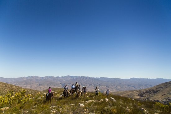 Eastern Cape, Südafrika: The highest point on day 1, overlooking the Klein Karoo north and the Tsitsikamma south.
