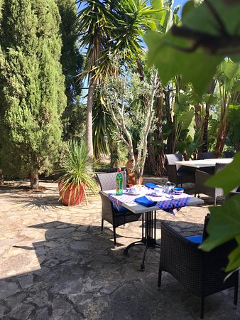 Finca Son Jorbo : A delicious, freshly prepared breakfast in the sunshine