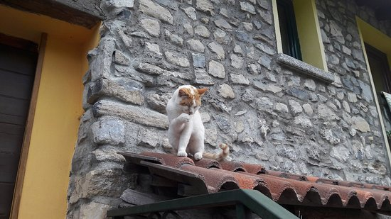 Schignano, Italien: 20180426_102317_large.jpg