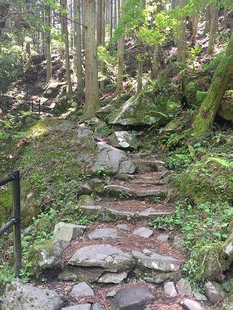 Higashi Shiya Falls张图片