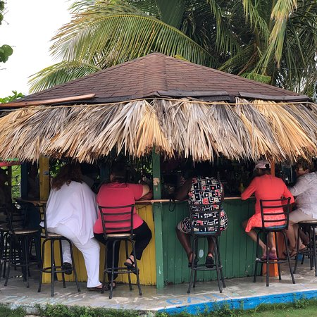 Max's Conch Bar & Grill: photo1.jpg
