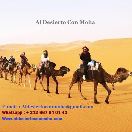 Al Desierto Con Moha