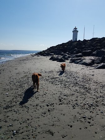 Fort Worden State Park: Windy side of beach