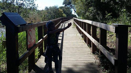 Cabecao, البرتغال: Passadiço 