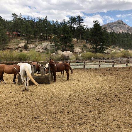 Lost Valley Ranch : photo2.jpg