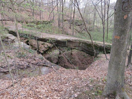 Rockbridge, OH: A view of the natural bridge