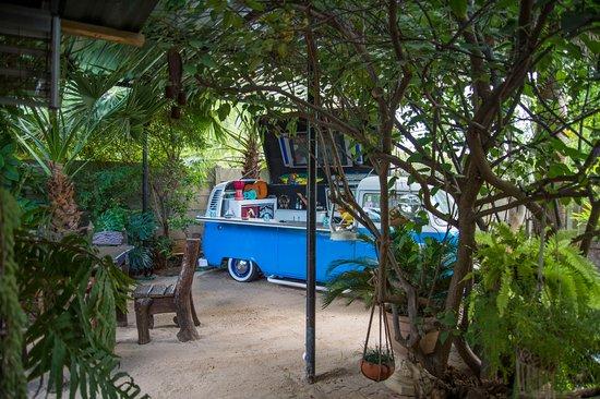 Tsumeb Backpackers & Safaris照片