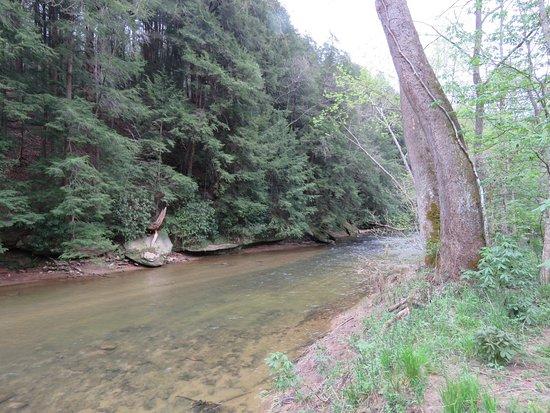 Rockbridge, OH: A view of the creek