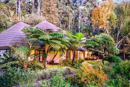 Lidgetton, דרום אפריקה: Main Building and Garden