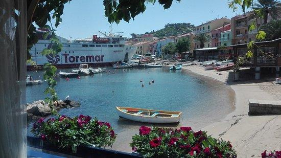 Trattoria Doria照片