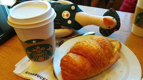 Starbucks: Гуси рекомендуют круассан
