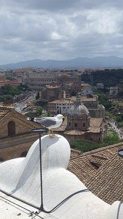 Roma dal Cielo Terrazza delle Quadrighe (Rome) - 2018 All You Need ...