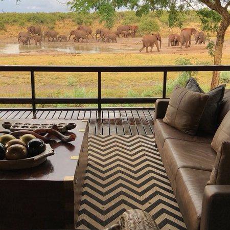 Madikwe Game Reserve, جنوب أفريقيا: photo0.jpg