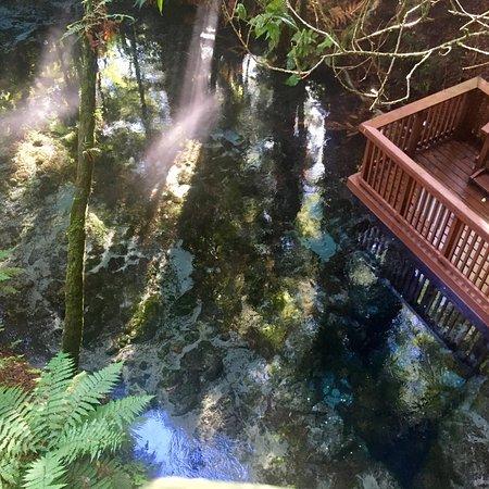 Hamurana, Selandia Baru: photo1.jpg