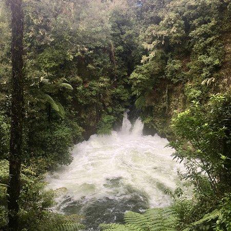 Okere Falls照片