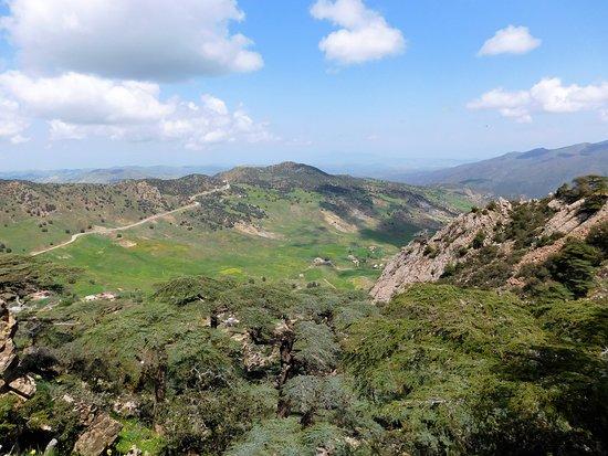 Tissemsilt, Αλγερία: Nature..