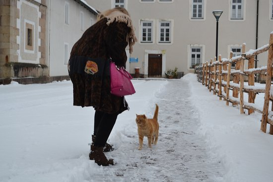 Nova Ponente, อิตาลี: io e il gatto più bello del Santuario