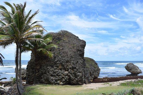 Saint Michael Parish, Barbados: A rock