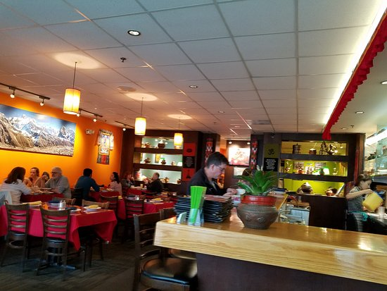 Ann Arbor Indian Restaurants Reviews
