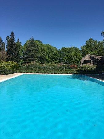Boismorand, Frankrike: Magnifique Auberge des Templiers parc tres bien entretenu et qui valorise hotel et restaurant