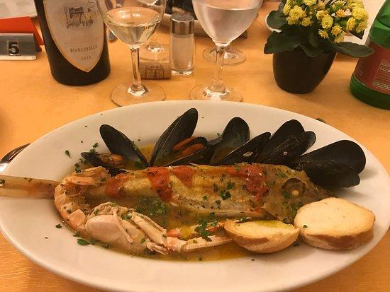 Poggio Aragosta Hotel & Spa: gustosissima gallinella in umido, cozze e scampi