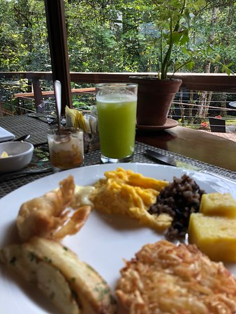 Bajos del Toro, Costa Rica: Excellent dining, we loved the fresh daily juices!